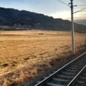 Blurred traintracks on a field of gold on the overnight train from Rome to Vienna