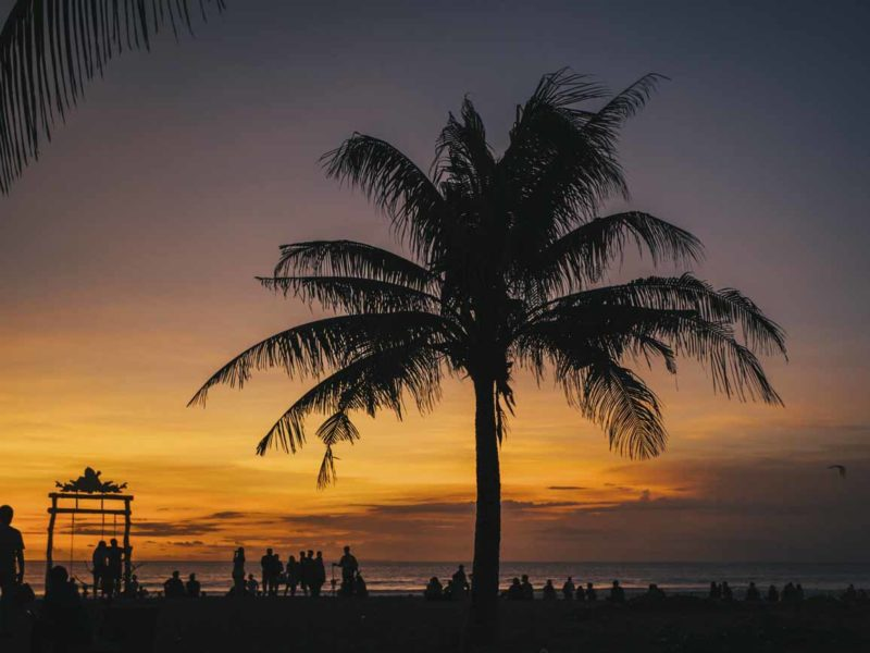 Sunset in Seminyak, Bali with a palm tree silhouette in the foreground.