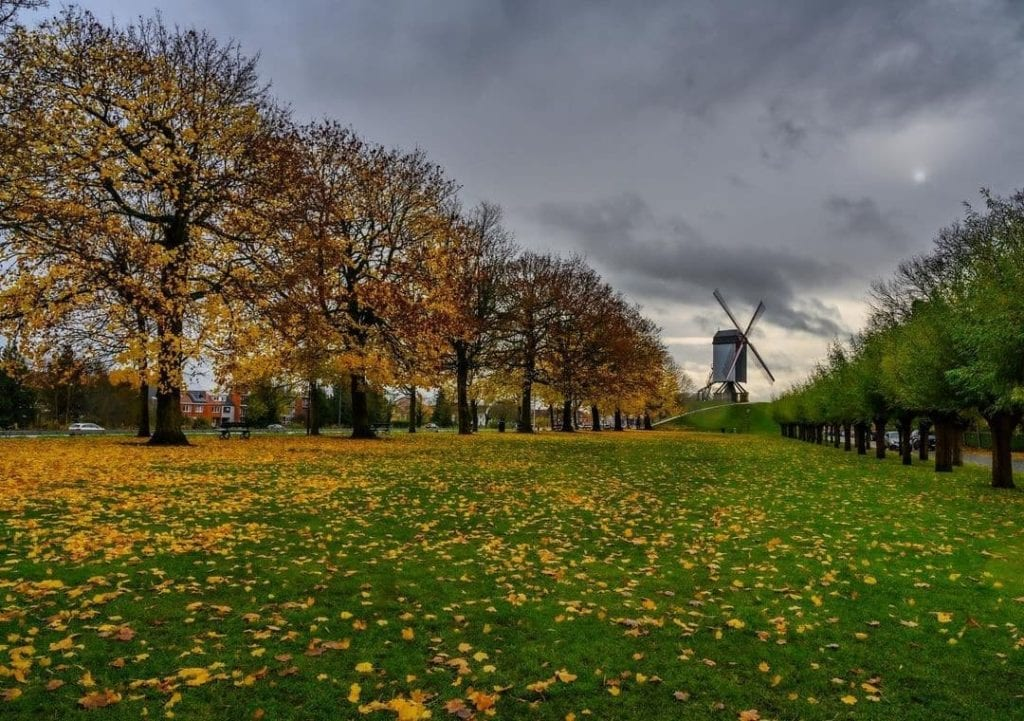 Mill in Bruges seen in autumn among the trees, a historical landmark to visit in Bruges.