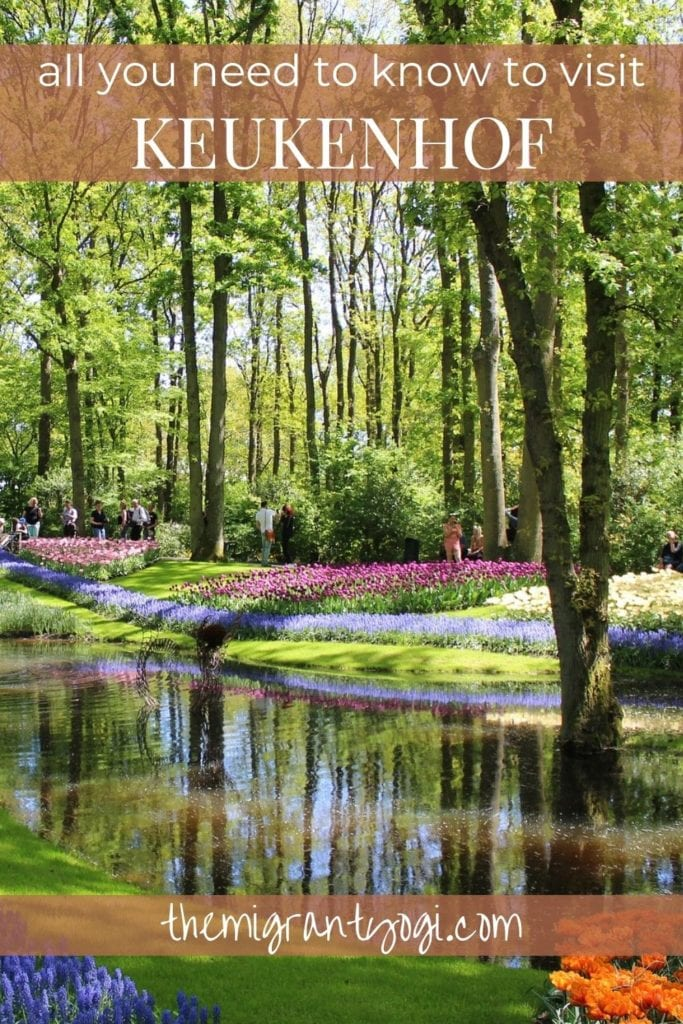 Pinterest graphic - ultimate guide to visiting Keukenhof with pond and flowers at the epic gardens in the image.