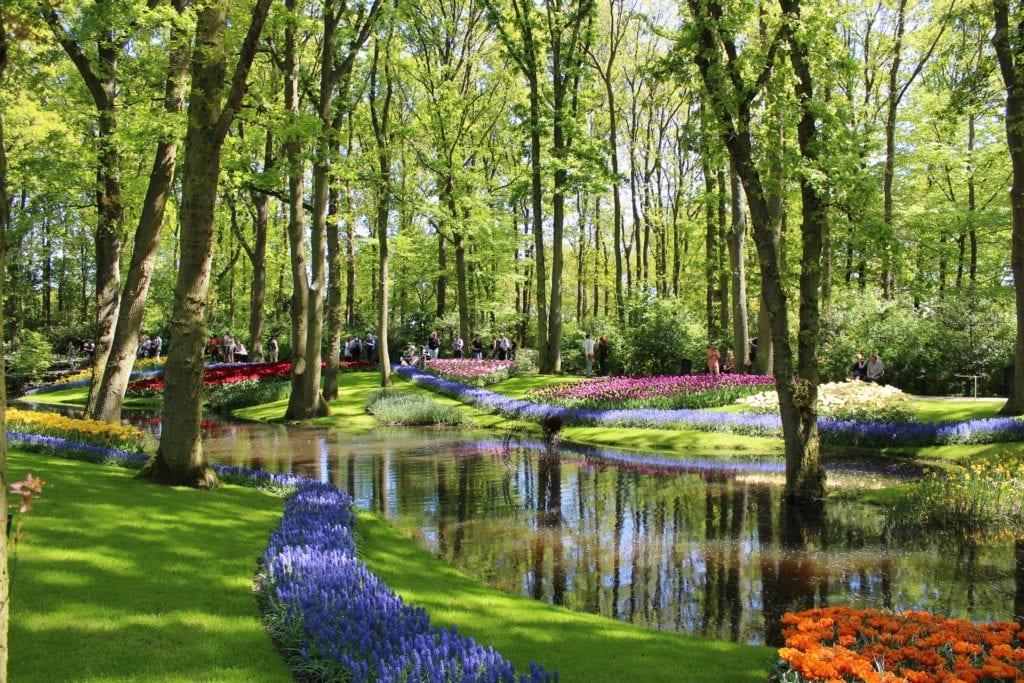 Green trees, purple and red flowers, and stream running through Keukenhof.