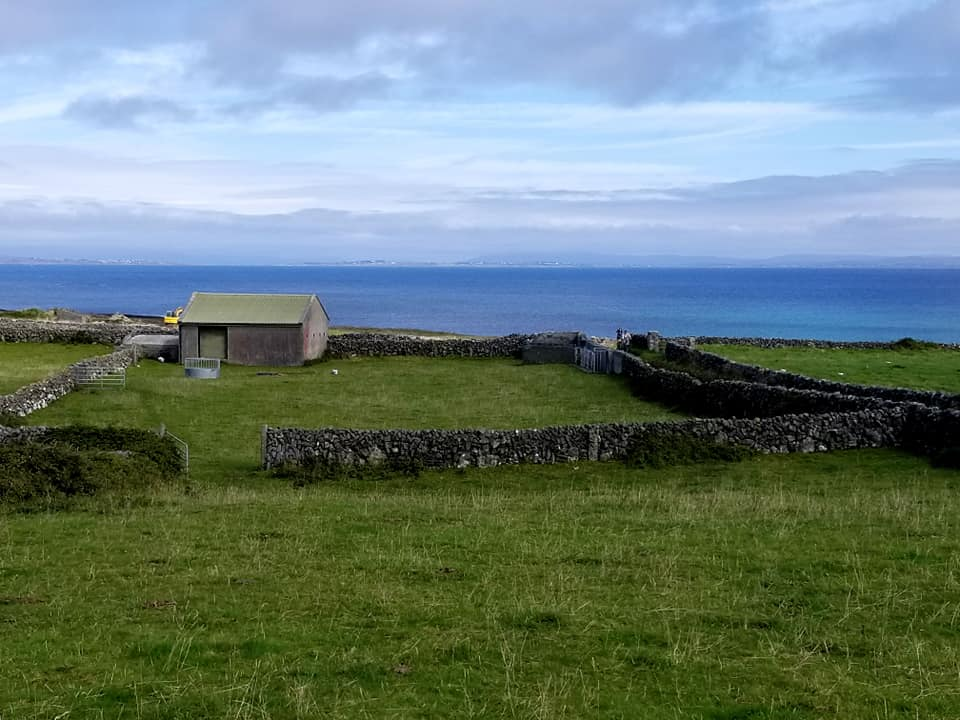 Small house within the stone wall frame work on the island of Inis Mor.
