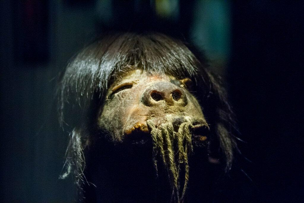 Shrunken head at Museo Pumapungo in Ecuador.