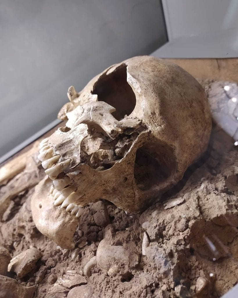 Ancient human skull at the archaeological museum of Vicenza, Italy.