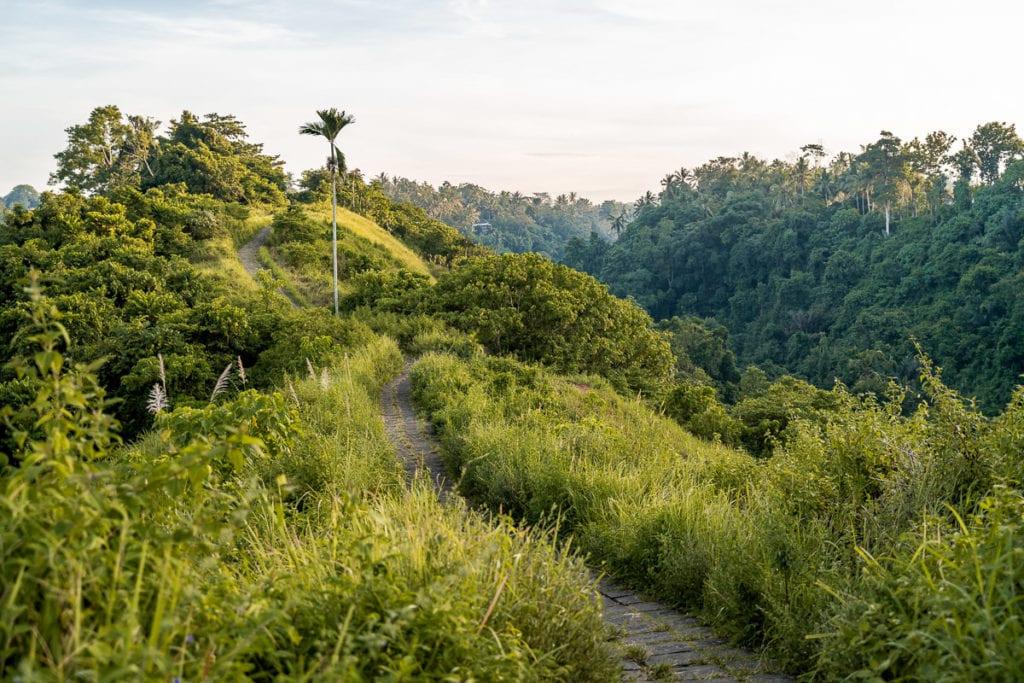 Campuhan Ridge Walk in Bali, Indonesia.
