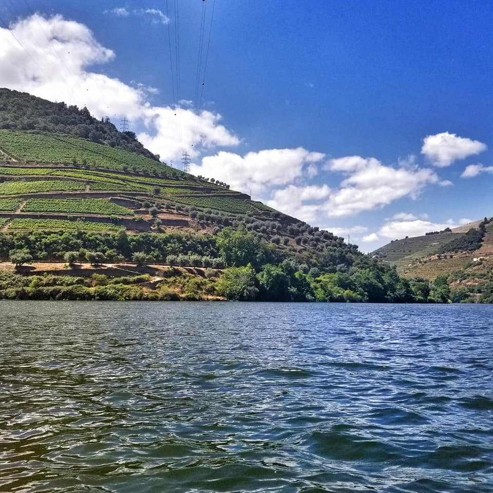 Tiered vineyards on the hills of Douro River Valley