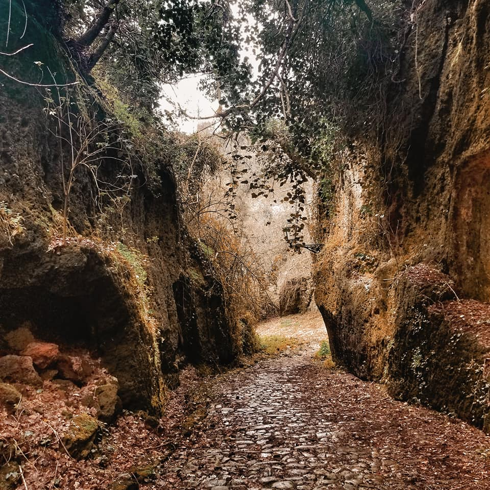 Path through tufo stone with etruscan caves and overgrown vines