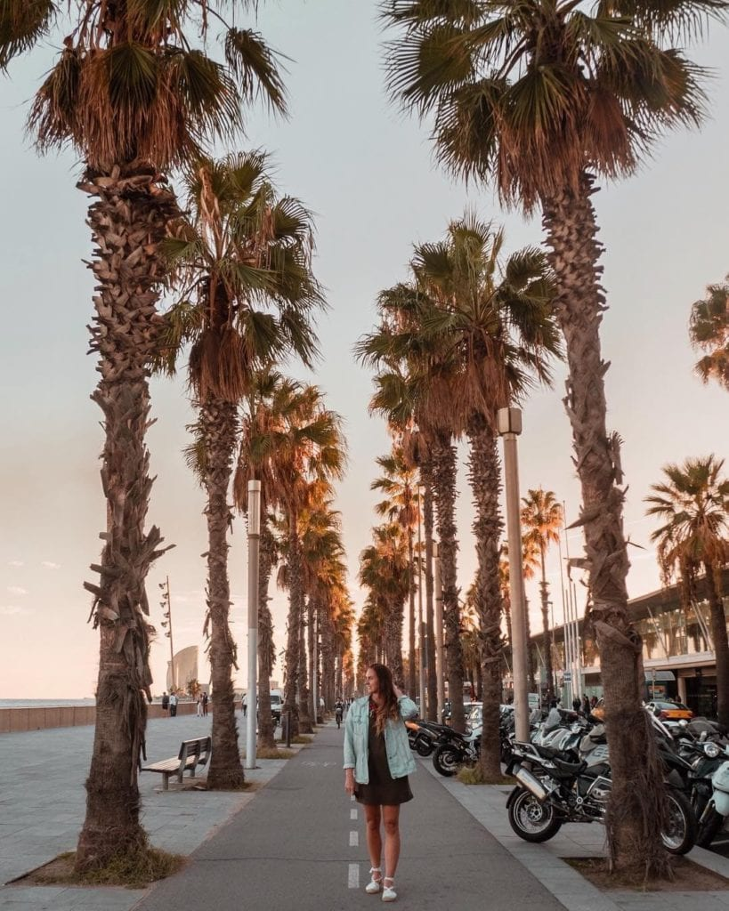 Woman walking toward the camera, facing to the beach as she stands on a sidewalk lined with palm trees at Playa de Barceloneta.