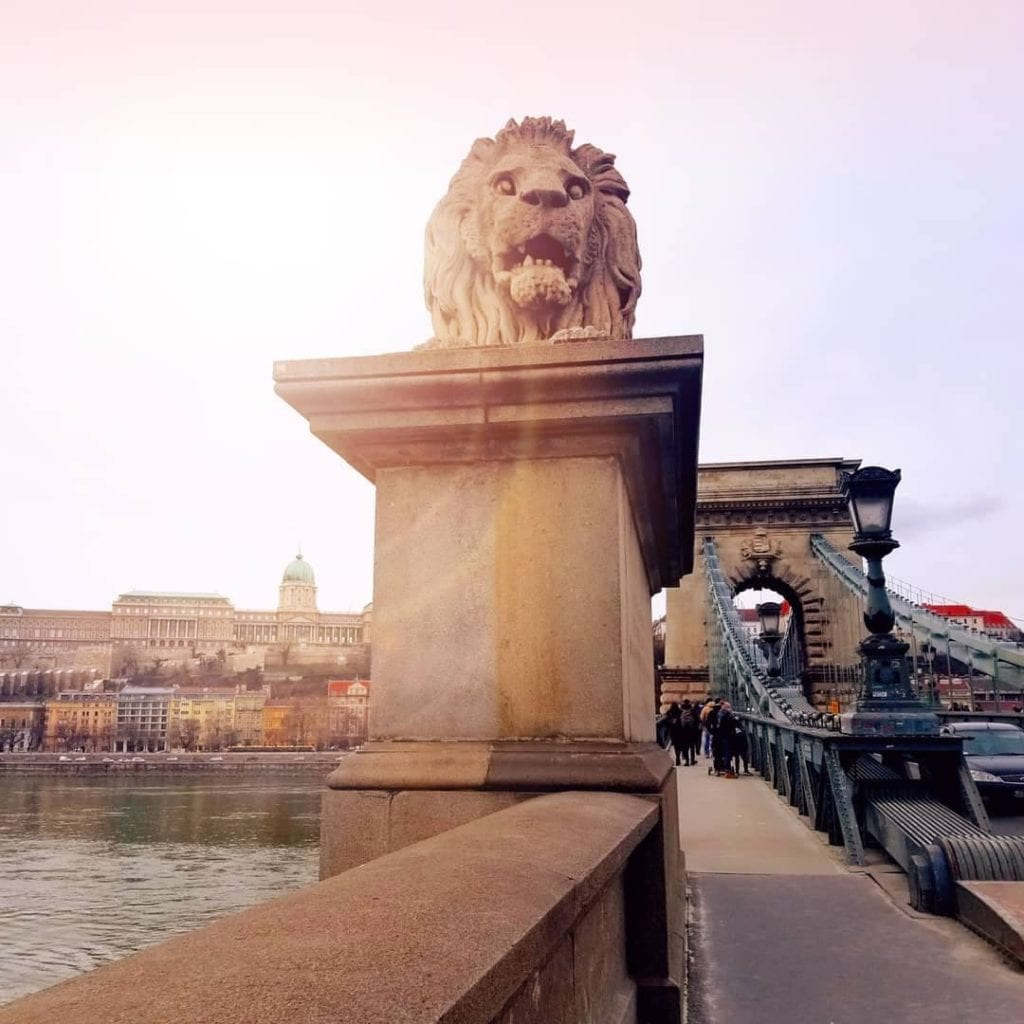 Chain bridge with the iconic lions and a glare from the sun giving extra light.