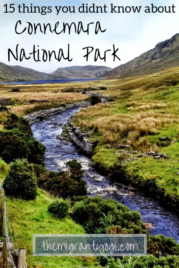 Stream running through the green hills of Connemara National Park on a Pinterest graphic: Facts about Connemara National Park