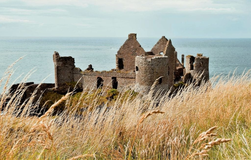 Seaside Irish castle remains on a cliff with reeds blowing in the wind in the foreground.
