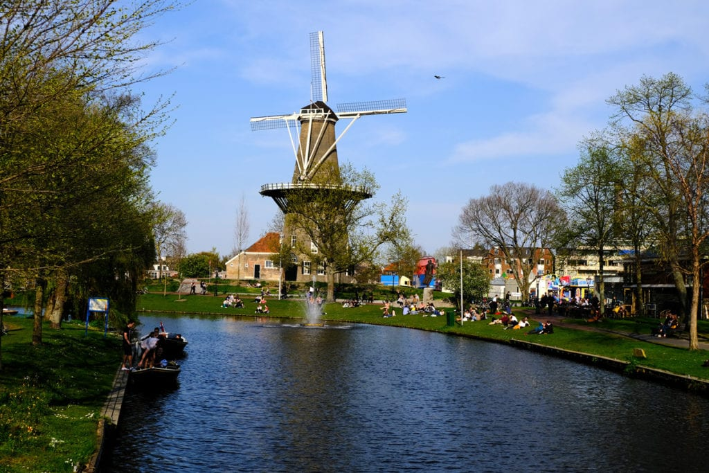 View down a canal in Leiden, Netherlands.  There are many people picnicking on the banks of the canal and a large windmill in the background.  Leiden is one of the best cities to visit in the Netherlands.