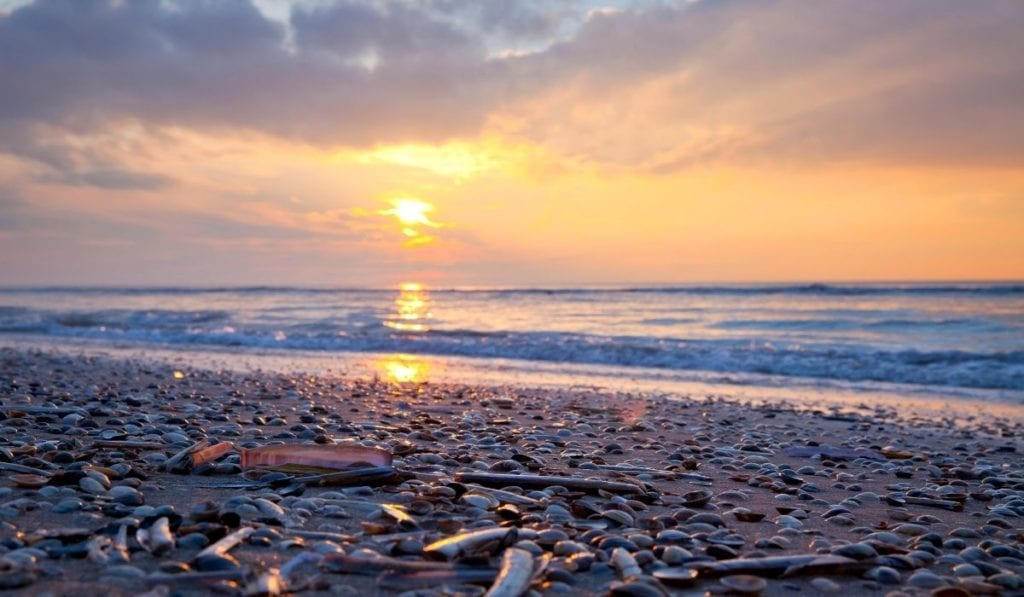 Zandvoort beach destination in Netherlands, an underrated vacation spot in Europe.