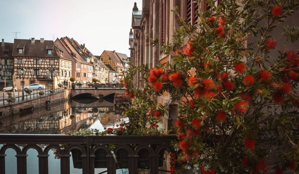 Looking down a canal of Colmar with half timbered houses and bright red flowers in the foreground, an easy day trip from Paris.