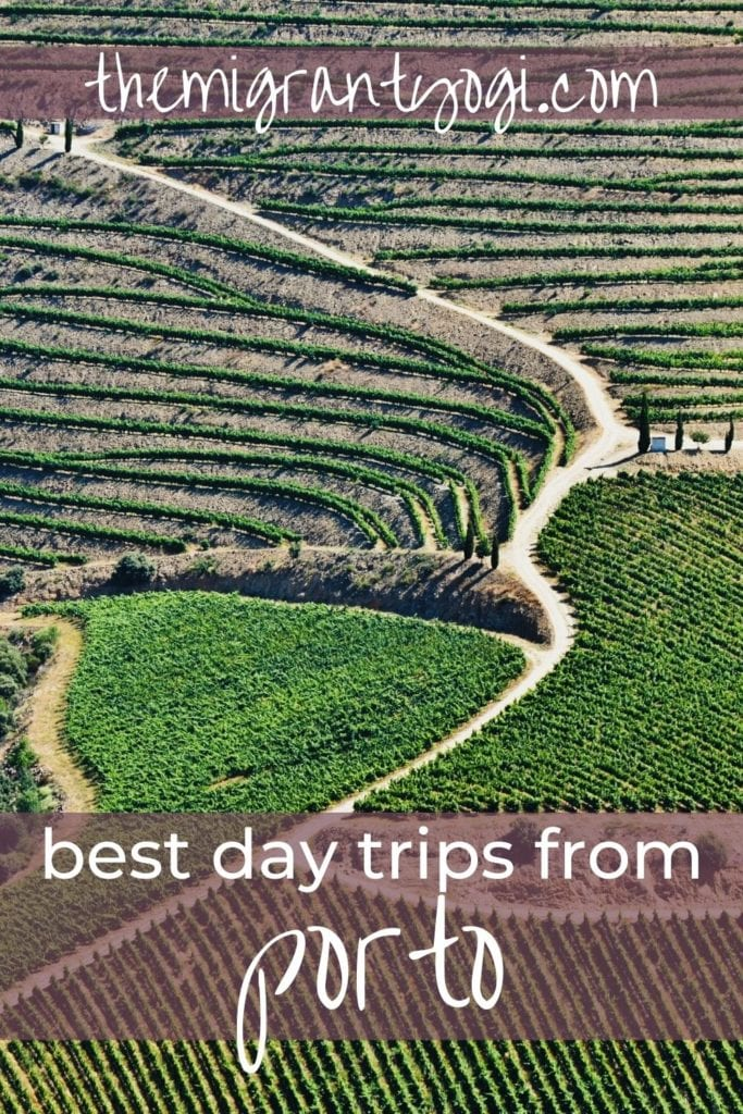 Pinterest graphic - tiered vineyards in the Douro Valley with text 'Best Day Trips from Porto'.