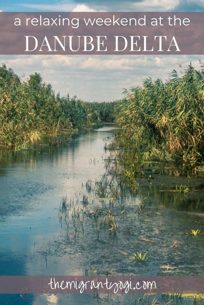 Pinterest graphic - scenic riverfront with text 'A relaxing weekend at the Danube Delta'