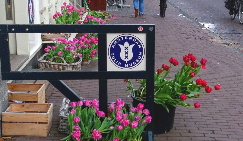 Outside of Amsterdam Tulip Museum, with baskets filled with different colored tulips on the sidewalk.