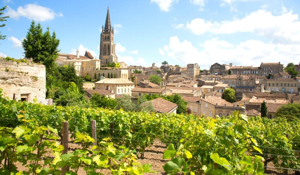 Taupe rooftops and bright green grape vines in the beautiful city of Bordeaux, France.