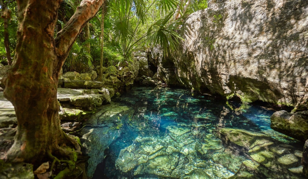 Clear blue waters of Cenote Azul with the shadow of surrounding jungle reflected on the water.