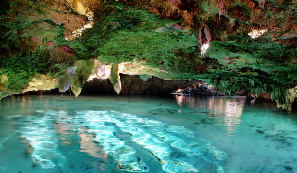 One of the most popular in Riviera Maya, the large swimming area at Grand Cenote.