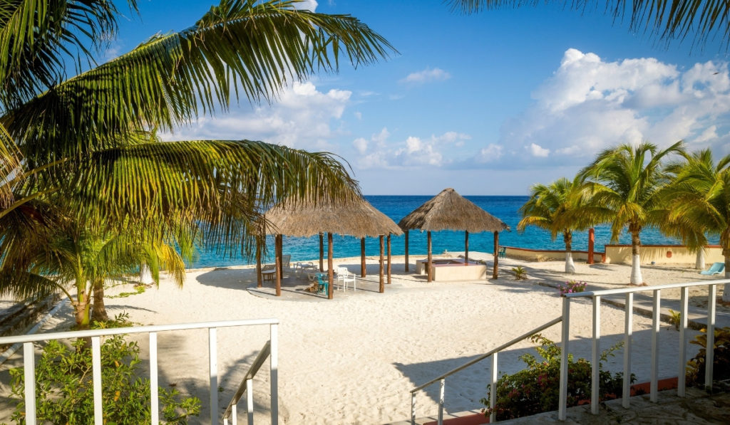 Empty beach of Cozumel, Mexico with white sand, palm trees, and blue seas.