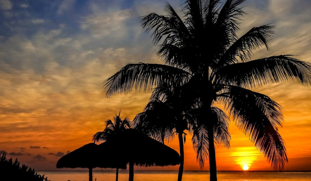 Bright orange and yellow sunset in Cozumel, Mexico with the silhouette of palm trees and beach umbrellas in the foreground.
