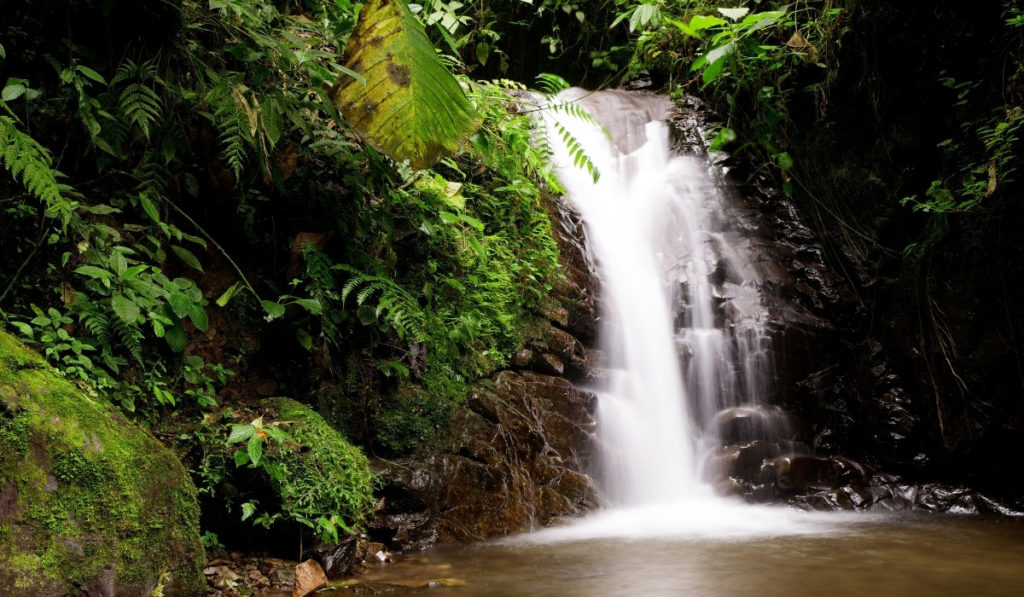 Large, cascading waterfall in the cloud forest of Mindo, Ecuador.